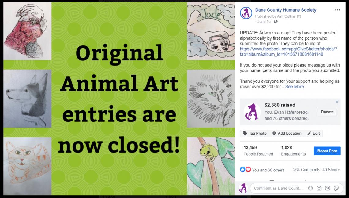 Animal Art FB Fundraiser